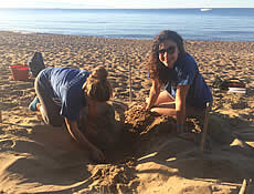 News flash for volunteers in ARCHELON's sea turtle conservation programs - Update 30/4/2020
