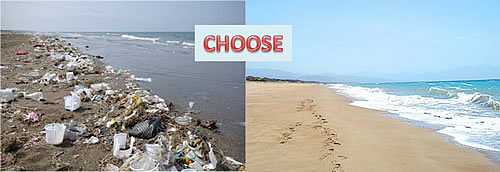 AND WHAT ABOUT THE LITTER INTO OUR SEA?
