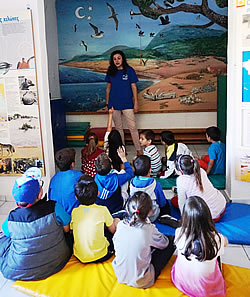 Students of the Peloponnese learn about ARCHELON and the marine environment