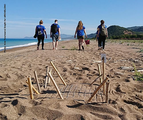 The first nest of loggerhead sea turtle in the Peloponnese!